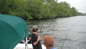 Mangrove Fishing Costa Rica