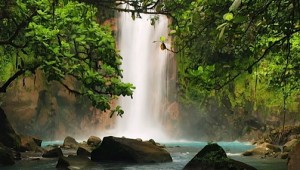 Jungle & River Vacation Packages In Costa Rica
