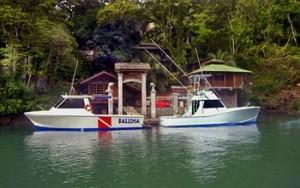 Isla del Cano Costa Rica Scuba Diving