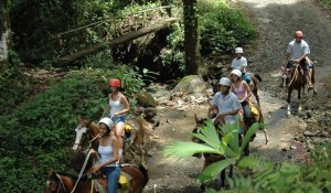 horseback riding in Costa Rican rainforest