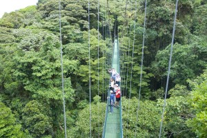 Hanging bridges in Costa Rica with Bill Beard's