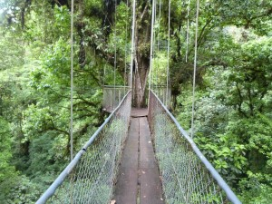 Costa Rica Hanging Bridges