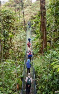 Hanging Bridges At Arenal Volcano Costa Rica
