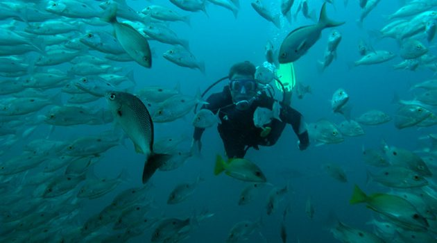 Bill Beard's scuba diving and adventure in Costa Rica