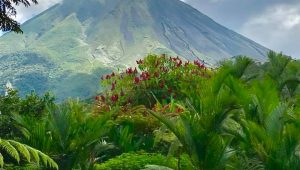 Arenal Volcano Costa Rica with Bill Beard's